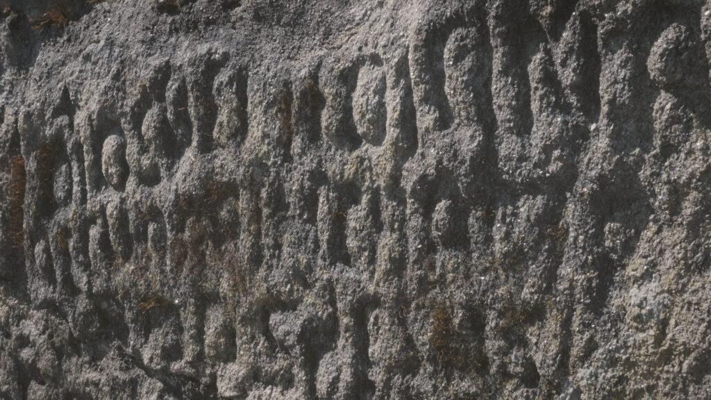 Esta imagen tiene un atributo ALT vacío; su nombre de archivo es Les-inscriptions-sauvages-003-1024x576.jpg