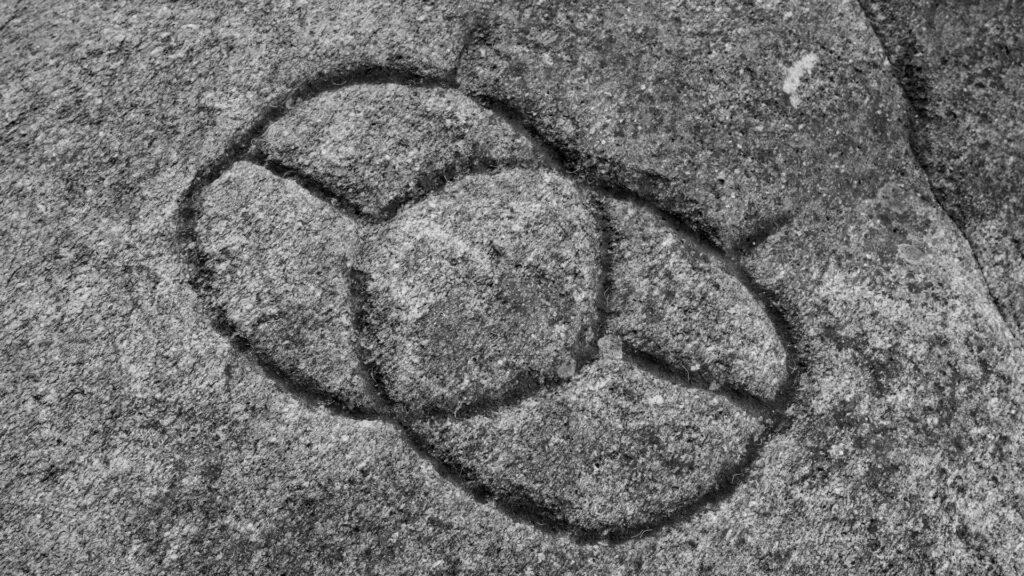 Esta imagen tiene un atributo ALT vacío; su nombre de archivo es Les-inscriptions-sauvages_001-1-1024x576.jpg